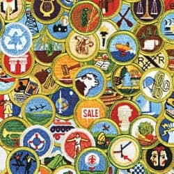 Troop 28 and Glencoe-Based Merit Badge Counselors